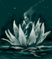 waterlily by rawenna