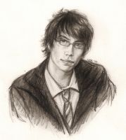 Young James Potter by LMRourke