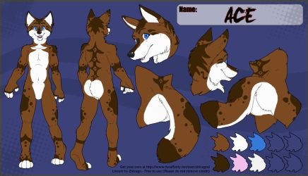 Ace ref sheet by Naime8
