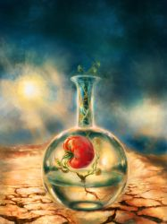 Test-tube Tomato Still-Life by Vladinakova