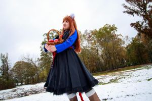 Holo Looks Ahead, Spice and Wolf Cosplay by firecloak