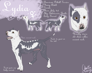 +Lydia Reference+ by MirageWolf