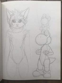 Sketchbook - Yoshi and Me by Pokecrz