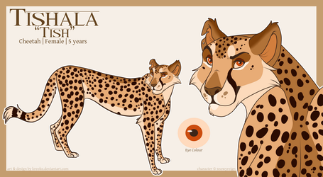 Tishala's Concept Art by SnowyReign