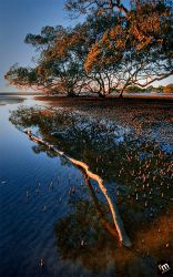 Nudgee Beach QLD by Rodelicious