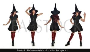Halloween Witch - Exclusive Stock Pack by faestock