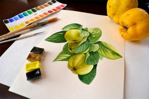 Watercolor quince by Rustamova