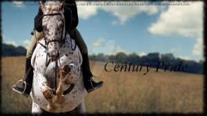 Century Pride by MollyMay335