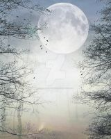 Forest with moon Background FGM by FairieGoodMother