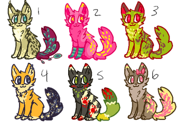 auction adopts closed by catnip5