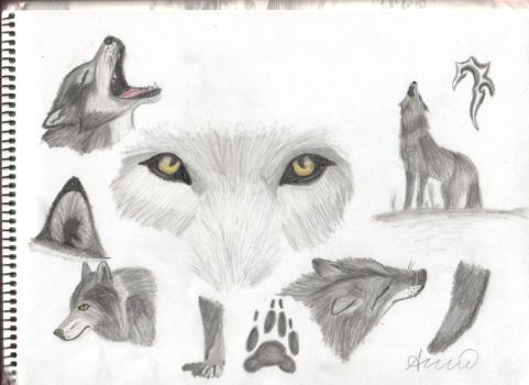 Wolves by Larka18