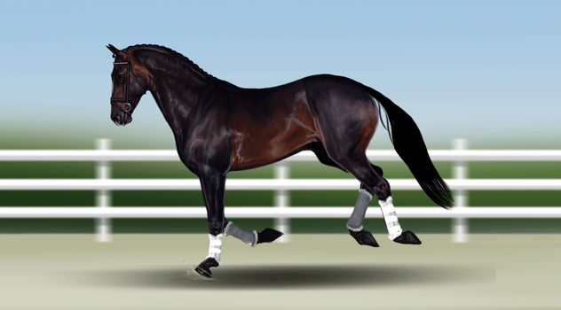I'm No Superman .:Canter Animation:. by wideturn
