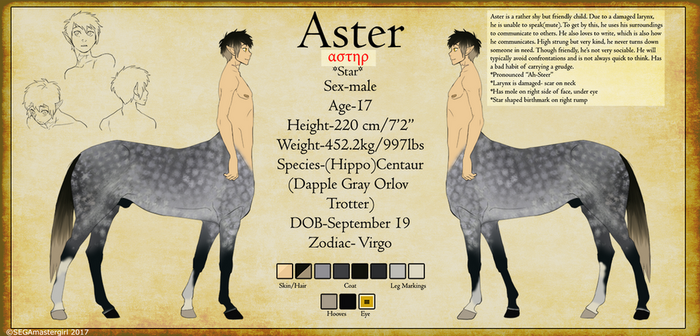 Reference 2017-Aster by SEGAmastergirl