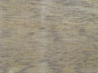 Wood1 by markopolio-stock