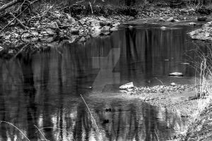 Shallow Reflections by Se7enVirtues