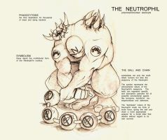 The Neutrophil by Bealy-Boy