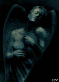 Dreaming angel by marcuspropostus