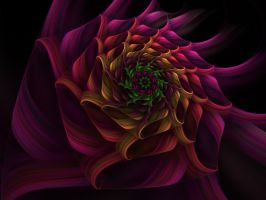 Spiral Flower 4 by johnnybg