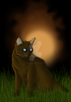Briarlight ~ #18 Warrior Cats Fanart by Ori-gina-lart
