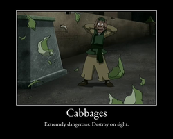 Cabbages by LucidFusion
