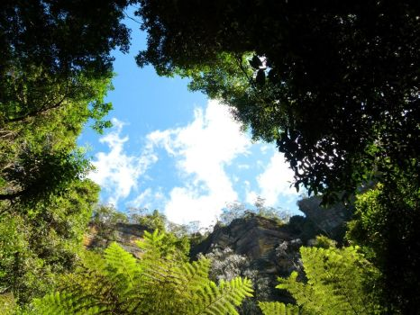 Jamison Valley - Blue Mountains #3 by Tami19