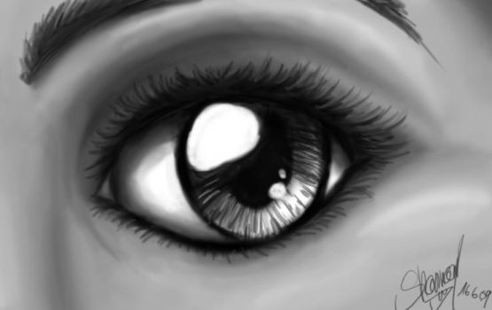 just an eye.its watching you.. by LilRisha