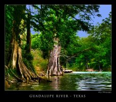 Guadalupe River Texas by DleeKirby