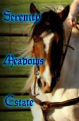 Serenity Meadows Estate Banner by mkayswritings