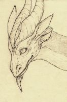 Dragon sketch 06 by Nimphradora