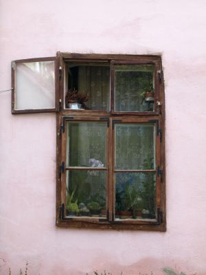 cute window by dreamlikestock