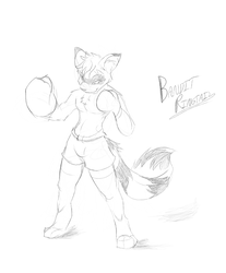 Ready to Go by BanditRingtail3