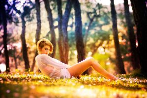 cc 12 by metindemiralay