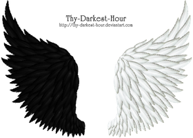 Black-White Feathered Wings by Thy-Darkest-Hour