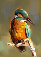 Kingfisher by Fievy