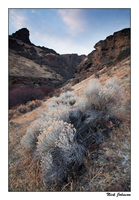 Jump Creek Canyon by collectiveone