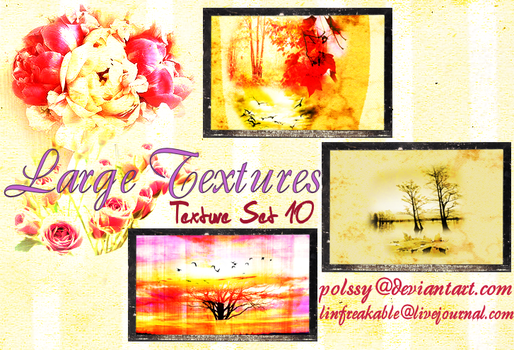 Texture Set 10 by Polssy