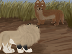 Spotted a Coyote by magikwolf