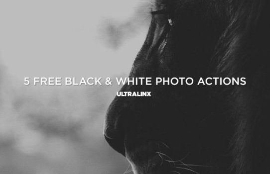 Free Black and White Photo Effects by frozencolor