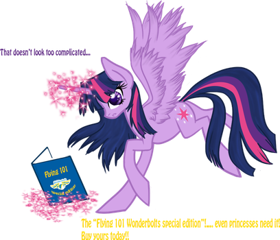 Flying 101 for Princesses by mlpAzureGlow