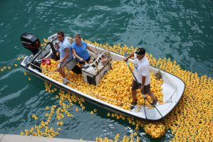 Rubber ducks in Chicago River by spudart