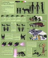 Camelopardia ref 2016 by camelpardia