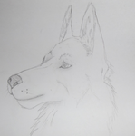 Woof! [ Traditional] by NorthernMyth