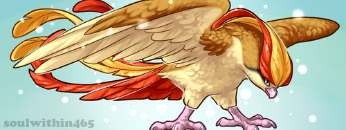 Pidgeot Banner by soulwithin465