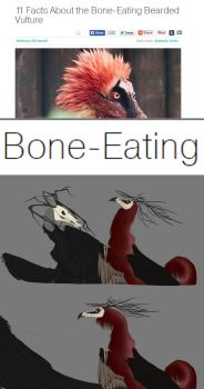 Bone-eating vulture by grievousfan