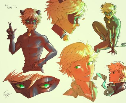 Chat/Adrien Doodles by invisibleninja12
