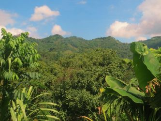 Costa Rica 18 by bleu-claire-stock