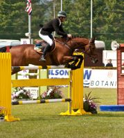 Jumping stock 43 by Kennelwood-Stock