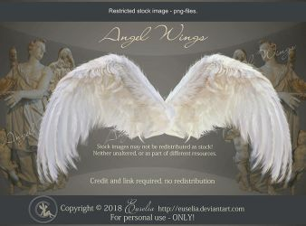 AngelWings2 - psd-files by Euselia
