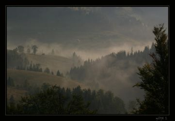 Misty morning by mona-hobbit