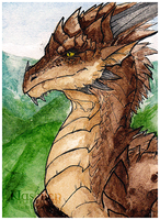Dragon ACEO by Naseilen